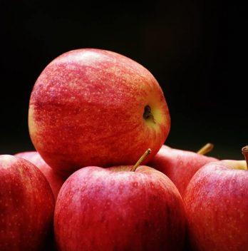 Can you Refreeze AppleSauce